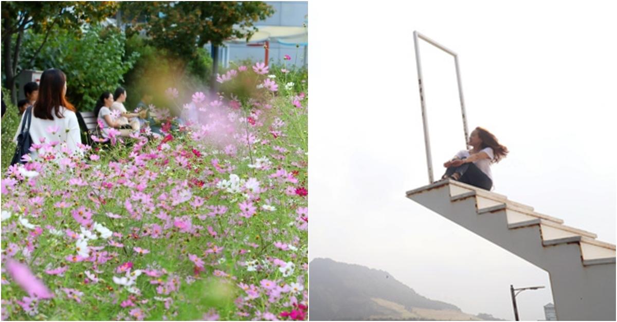 [6일 날씨] 본격적인 가을, 쌀쌀한 아침…태백 7도 '뚝'
