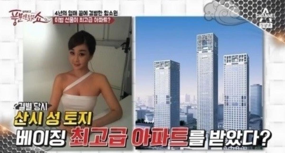 """""""중국 재벌의 전 남자 친구가 허구의 인물인가?""""… 함소원으로 또 다시 조작 의혹 터져    급파"""